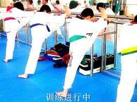 北京散打培训泰拳 跆拳道培训女子防身术 中小学体能达标