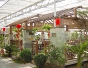 生态餐厅建造-山东生态餐厅造价