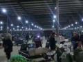 贵池西外环 杏花村农贸批发大市商业街卖场 86平米