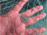 拦鸡网批发 养殖网 养鸡网  高品质塑料PE拦鸡网 养鱼渔网防鸟