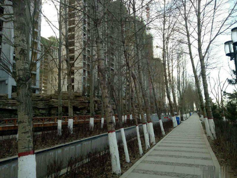 金座昕艺园 海湖高端小高层 可贷款 楼前无遮挡 立马签合