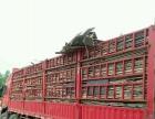 高价回收方木、竹胶板,木质托盘