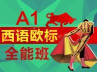上海培训西班牙语课程 有趣的教学模式