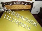烟台芝罘区电热炕烟台芝罘区韩国电热板