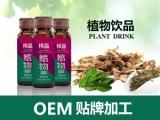 果蔬植物饮品贴牌,植物饮品OEM定制,植物饮品生产代加工供应