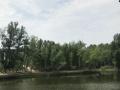 小五家乡新井子村双庙 鱼塘11339平米