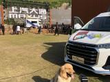 杭州上城寵物訓練 專業訓犬超大場地