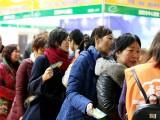 2020年中国 洛阳 智慧养老医疗博览会