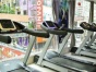 全民健身皆在逸起动减肥塑形增肌(600一年)