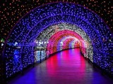 LED灯光节商场美陈制作