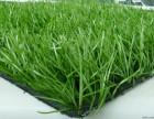 北京人造草坪厂家