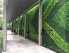 东城专业定做仿真绿植墙 交道口免费设计