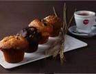 厦门帕斯库奇咖啡加盟条件帕斯库奇算大品牌吗