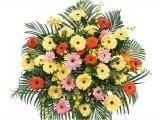 成都开业花篮预定绿植配送鲜花速递婚礼会议花艺活动鲜花店