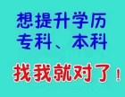 上海育睿教育