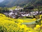 福州到黄山婺源三日游一价全含仅需598 婺源年最佳赏花季节