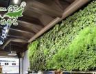 绿色家具,环保绿墙