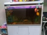 佳宝水族缸转让赠送地图鱼和鹦鹉鱼