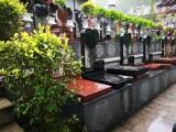 成都市墓地名字 成都周边公墓价格一览 公墓价格比较