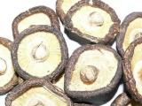 供应批发青岛各种优质菌种 干蘑菇 干香菇