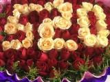 金蔷薇花店花到付款,外送开业花篮和植物