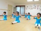 奉贤南桥专业少儿中国舞舞蹈培训学校