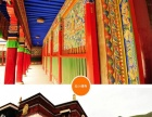 2018年春节--甘南郎木寺瞻佛毛兰姆大法会摄影
