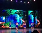 西青区中北镇海柏思拉丁舞专业培训 可考级