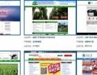 微信网站营销专家,就选益阳中网科技