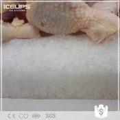 火锅生鲜冷冻小型片冰机厂家批发