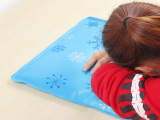 夏季笔记本降温 沙发冰枕 汽车凉垫