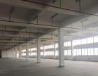 新埭 厂房 1600平米