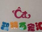 【百宠汇】宠物用品猫粮狗粮服饰寄养