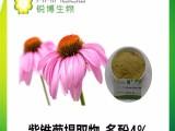 紫锥菊提取物,紫锥菊多酚4%