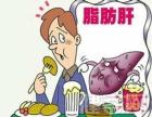 廊坊市脂肪肝如何有效治疗 牡蛎枸杞养生菜效果怎么样
