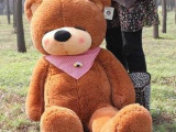 瞌睡熊毛绒玩具批发 时尚动物泰迪熊儿童玩具 创意玩具厂家热卖