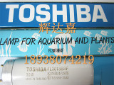 鲜肉灯管FL30T8BRF,东芝TOSHIBA生鲜灯