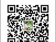 西安自强东路西路吉他培训 非洲鼓培训班