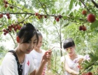 (同城)唐县古北岳经济园附近休闲农业旅游采摘园招商
