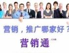 网络推广 网站关键词优化公司 SEO优化哪家好