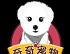 荆州有实体店的线上淘宝店,有需要可以下单。
