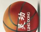 全长沙,灵动青少年专业篮球训练营,篮球培训班。
