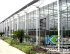 温室大棚建设,温室大棚造价,生态餐厅设计建设