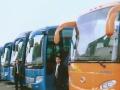 全一汽车服务有限公司,承接各种旅游用车,商务租车