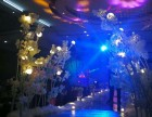 诺蓝高端婚礼定制