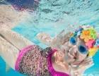 孩子快人一步,游泳培训班报名啦!室内恒温泳池,专业