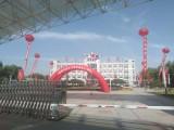 开发区氢气球空飘,气球拱门礼炮租赁