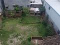 出租荔城土地,适用于花卉栽培
