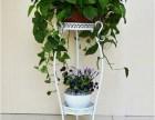 欧式铁艺花架 多层绿萝 吊兰落地花盆架 阳台客厅室内花盆架