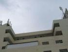 漳浦公安局前方600米高性价比厂房出租